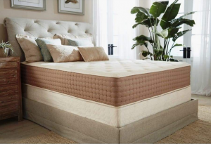 eco terra mattress review