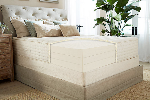 "12"" Botanical Bliss by Plush Bed review"